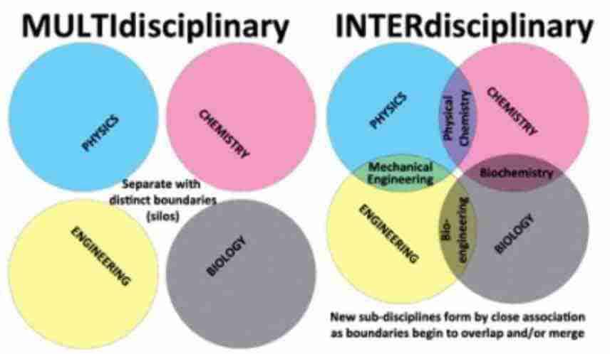interdisciplinarieta